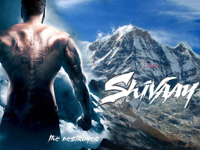 Shivaay 8th Day Collection, 8 Days Collections