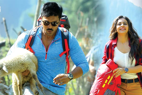 Dhruva 10 Days Collections